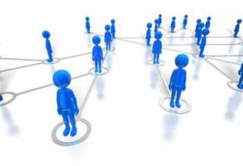 Was unterscheidet die Organisation der Firma: Praktische Aspekte