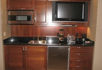 Cómo elegir un televisor en la cocina