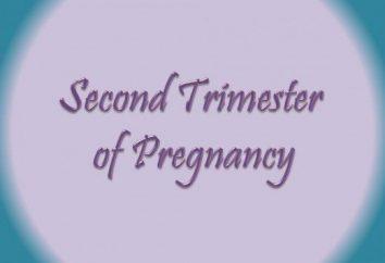 Zuteilung im zweiten Trimester der Schwangerschaft: Soll ich mir Sorgen machen?