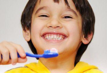 Dentisterie pédiatrique Dzerzhinsk: contacts, la description des services, des témoignages