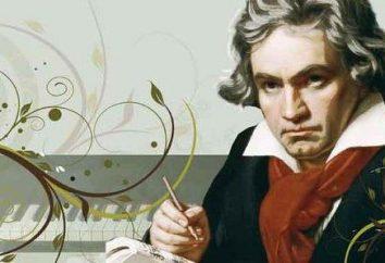 Ludwig van Beethoven arbeitet