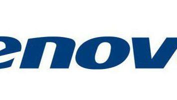 Laptop Lenovo IdeaPad 100-15: Bewertungen, Spezifikationen, Bewertung
