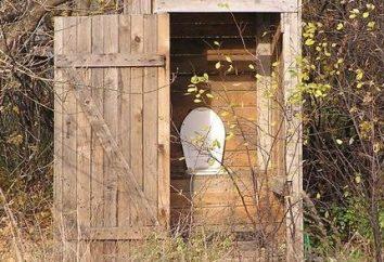Construindo um WC cabanas de madeira