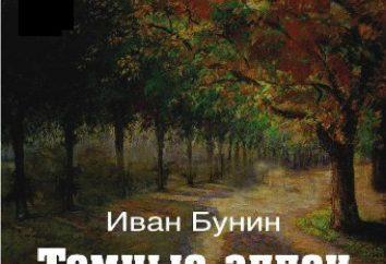 L'analyse de l'histoire de Bounine « Caucase »: les images du système, paysage