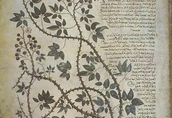 """""""A Tale of cour Shemyakin"""": terrain, caractéristiques artistiques"""