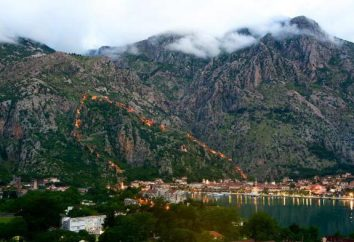 Tutti del Montenegro per i turisti: suggerimenti, consigli e recensioni su tutto il resto