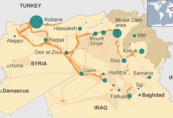 A situação na Síria. A situação política na Síria. guerra civil na Síria