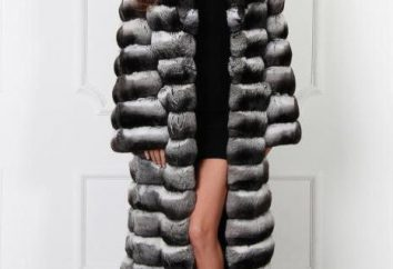 Come giustifica l'acquisto di cappotti di pelliccia cincillà