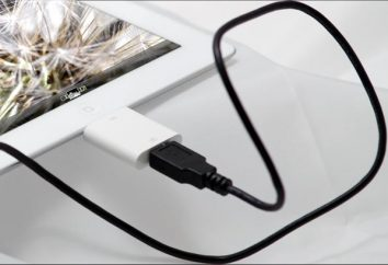 Come un flash drive USB collegata al iPad: un paio di semplici consigli
