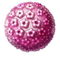 Jak niebezpieczne jest HPV 16