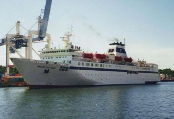 """Statek """"Michaił Szołochow"""": zdjęcia i opinie"""