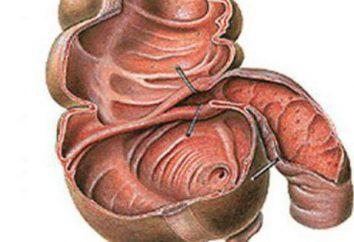 rabat Bauginieva: description, causes, les symptômes, et la forme particulière de traitement