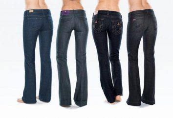 Como escolher jeans para as mulheres a figura? Calças de ganga para mulheres com diferentes tipos de formas: Dicas sobre seleção