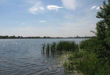 """""""Lago Bear"""", quartiere Shchelkovo: ricreazione, pesca, recensioni"""
