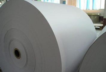 Papier offsetowy: zastosowanie i odmiany
