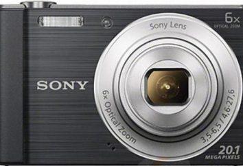 Appareil photo numérique Sony Cyber-shot DSC-W810: description des modes de prise de vue, commentaires