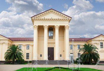 Muzeum Sztuki, opis Soczi, ekspozycja, ceny