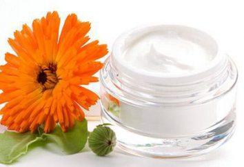 Crema fluida: ¿qué es y cómo elegir el mejor medio?