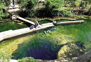 puits de Jacob naturel (Texas, États-Unis), et les dangers qu'il stocke