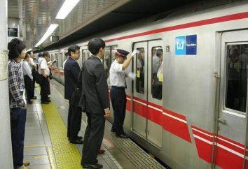 Tokyo metropolitana: la descrizione del regime, dalla stazione e recensioni