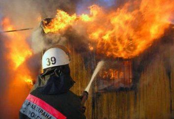 Los incendios en Tyumen y la región de Tyumen