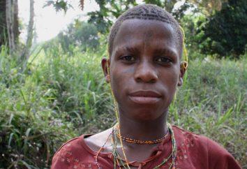Pygmy jest rezydentem lasów równikowych w Afryce