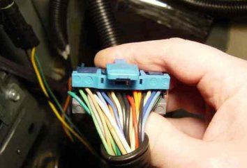 Connexion d'un amplificateur pour un meilleur son