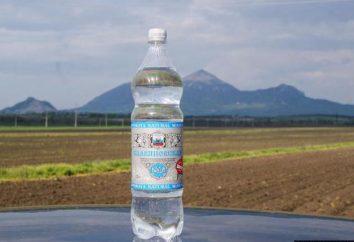 """L'acqua minerale """"Slavyanovskaya"""": composizione, applicazione. Società per Azioni """"Acqua minerale di Zheleznovodsk"""""""