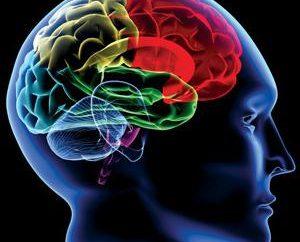 CT del cervello: indicazioni e controindicazioni