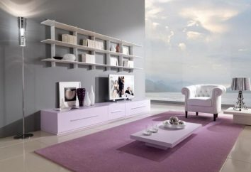 Wybór modułową ścianę do salonu