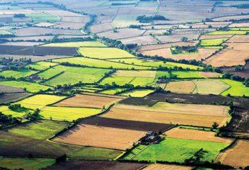Nieodpłatne użytkowanie gruntów: warunki. Użytkowania wieczystego gruntu