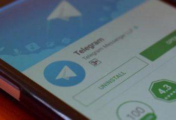 """Como fazer um bot nos """"telegramas"""" sem habilidades de programação? Dicas e truques para """"telegrama"""""""