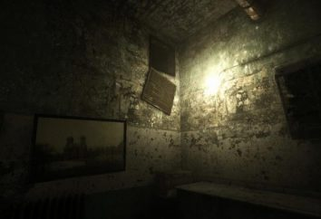 Pasaje Outlast Denunciante. Outlast Whistleblower: Descripción general