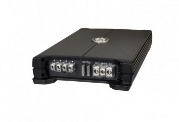 amplificatore stereo DLS MA41