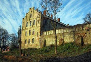 Château Georgenburg: photo, adresse, voyages