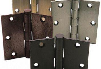 Las bisagras de la escotilla de la bodega. bisagras de la puerta, automotriz, hogar-hechos: que es mejor? instalación
