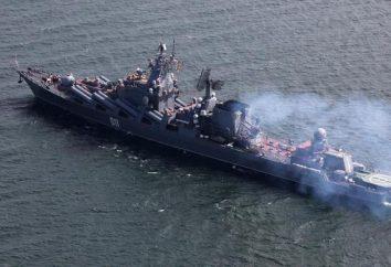 Cruiser – okręt powierzchni: Właściwości, przyporządkowanie. Rosyjskie okręty wojenne
