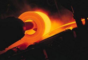 Il peso specifico dell'acciaio. Calore specifico in acciaio