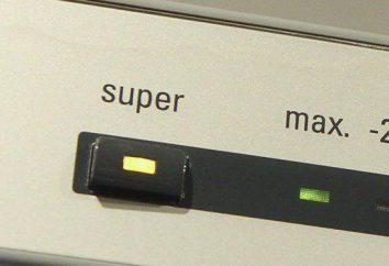 Perché il frigorifero non si spegne. Riparazione del frigorifero