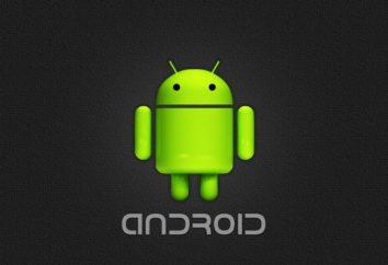 """Come installare il gioco su una cache di """"Android""""? Installare giochi con cache sul tablet """"Android"""""""
