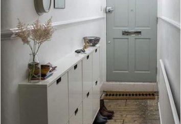 Il design moderno del salone d'ingresso stretto (foto)