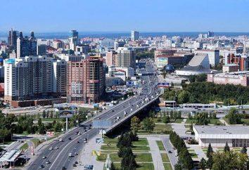 Novosibirsk Region 154. Synopse