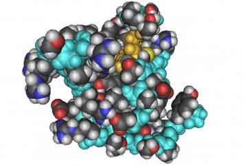 fattore di crescita insulino-simile: la norma e deviazione