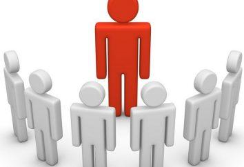 Der einzige Exekutivorgan des Unternehmens: die Aufgaben und Befugnisse