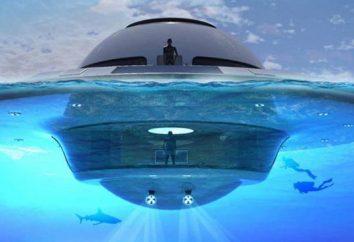 Il governo cileno ha declassificato il video UFO, ha fatto 2 anni fa