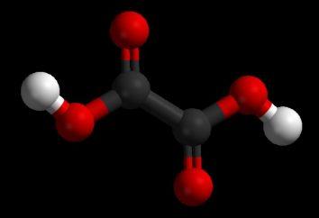 dieta clorogênico ácido: mito ou um remédio eficaz?