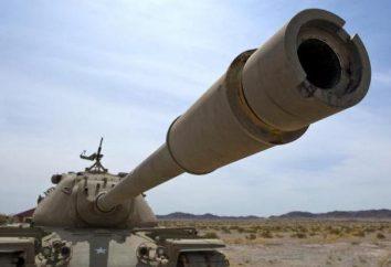 Por que o sonho de um tanque: interpretação