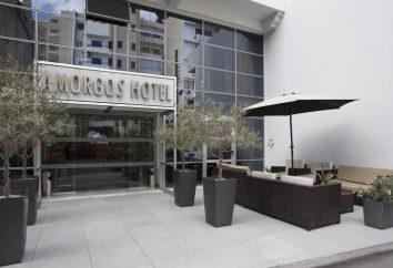 Hotel Amorgos Boutique Hotel 3 * (Larnaca, Chypre): description, photos, avis des touristes
