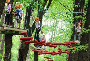 Nowoczesna forma rekreacji – park linowy w Moskwie