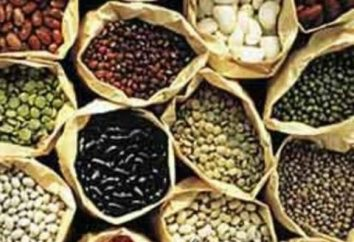 métodos de propagação de plantas: semente e vegetativa